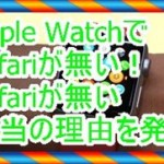 Apple WatchにSafariが無い!無い理由を発表します